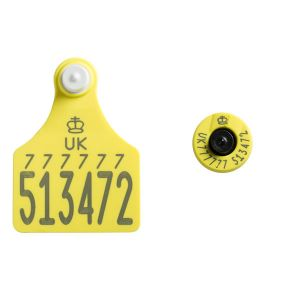 Ultra Senior TST Primary and Ultra Button EiD HDX Secondary Yellow