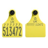 Replacement Ultra Senior Primary and Ultra Senior Secondary Yellow with Management Space Cattle Tags